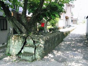 熊野古道伊勢路の紀北町上里トロッコ軌道跡