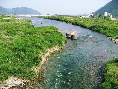 銚子川の清流