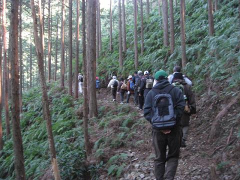 紀伊半島みる観る探検隊、三浦越えを歩くツアー参加者