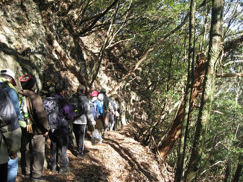 紀伊半島みる観る探検隊、熊野古道伊勢路・始神峠に向かうツアー参加者