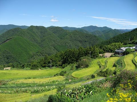 熊野古道中辺路・高原の眺め