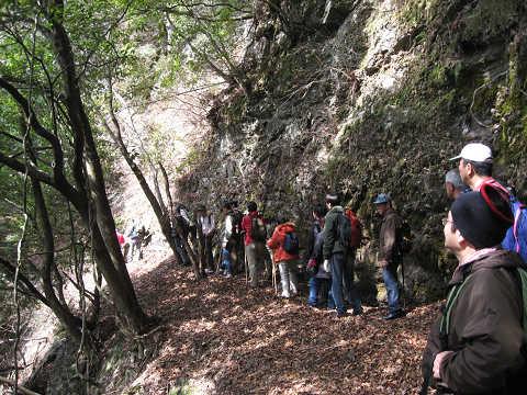 紀伊半島みる観る探検隊、崖沿いの坂下道路を歩くツアー参加者