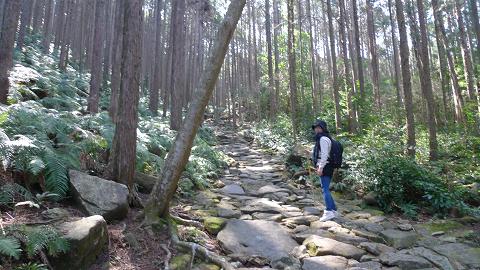 熊野古道伊勢路・馬越峠を歩くツアー参加女性