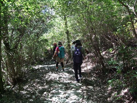 熊野古道伊勢路・馬越峠を歩くガイドとツアー参加女性
