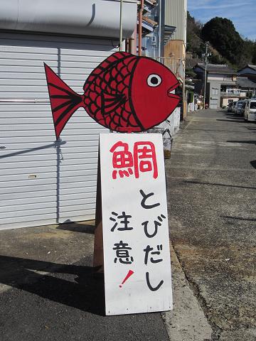 めでたい屋 鯛とびだし注意!