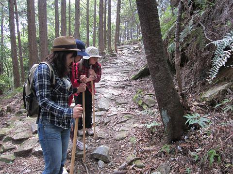 熊野古道伊勢路・馬越峠にて植物観察をする女子旅3人