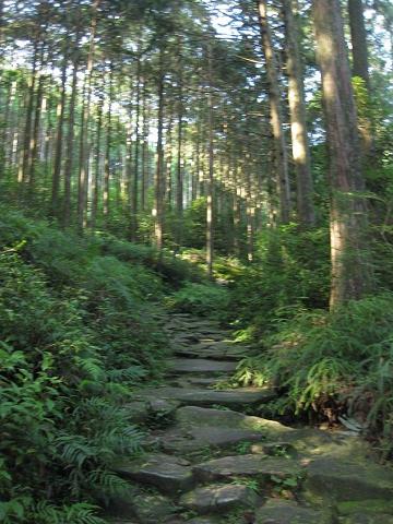 熊野古道伊勢路馬越峠