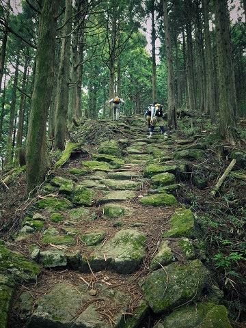 熊野古道中辺路・大雲取越の石畳を歩くガイドとツアー参加者
