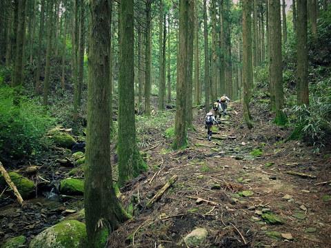 熊野古道中辺路・大雲取越を歩くガイドとツアー参加者