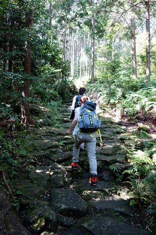熊野古道伊勢路・馬越峠の石畳を歩くガイドとツアー参加女性