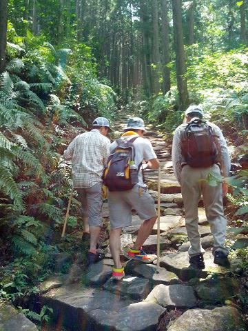 熊野古道伊勢路・馬越峠を歩くガイドとツアー参加男性