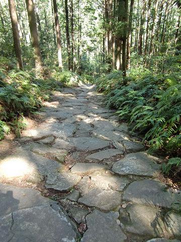 熊野古道馬越峠の石畳道