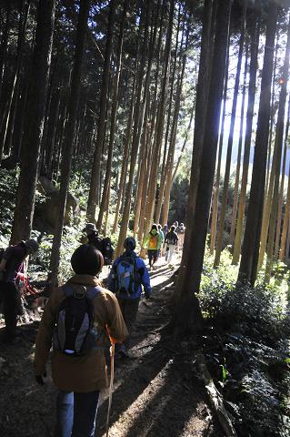 熊野古道伊勢路・八鬼山越えを歩くツアー参加者たち