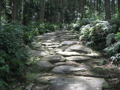 熊野古道馬越峠道