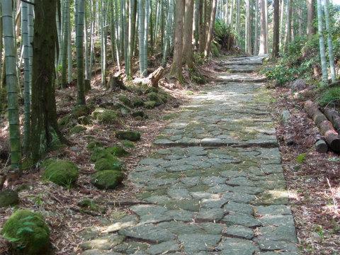 熊野古道・松本峠道
