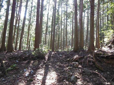荷坂峠の茶屋跡
