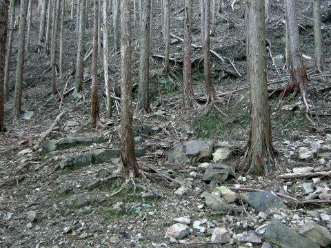 熊野古道伊勢路のこぎり坂の痕跡