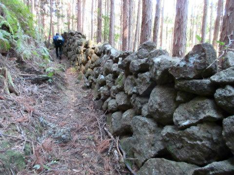 熊野古道伊勢路・松本峠から続く猪垣