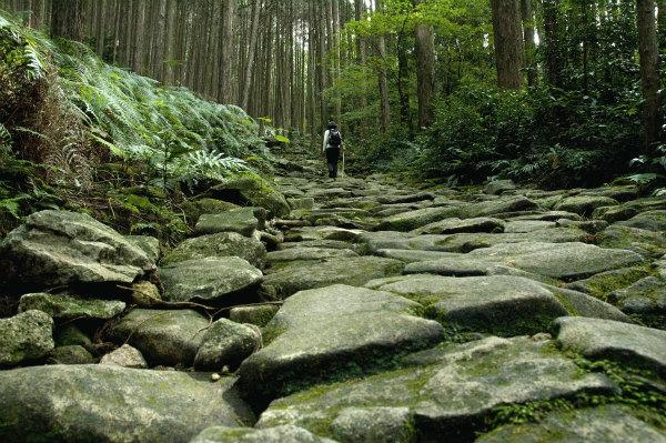 熊野古道伊勢路・馬越峠道を歩く一人旅女性