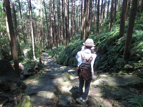 熊野古道女性一人旅応援プランの様子、馬越峠で石畳の写真を撮る