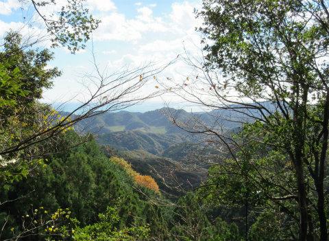 熊野古道伊勢路・横垣峠道の坂ノ峠からの眺め