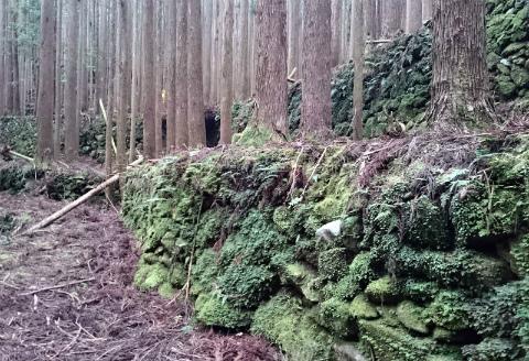 御浜町片川の奥地集落跡の石垣