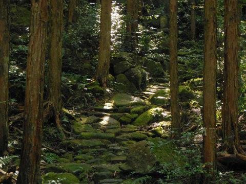 熊野古道伊勢路・八鬼山越えの石畳