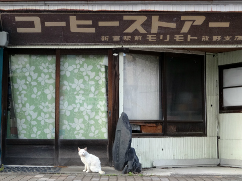コーヒーストアー看板と白猫