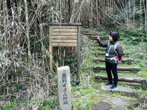 熊野古道中辺路・高野坂入口で解説するガイド福辻京子