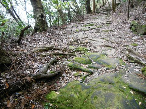熊野古道中辺路・高野坂の石畳道