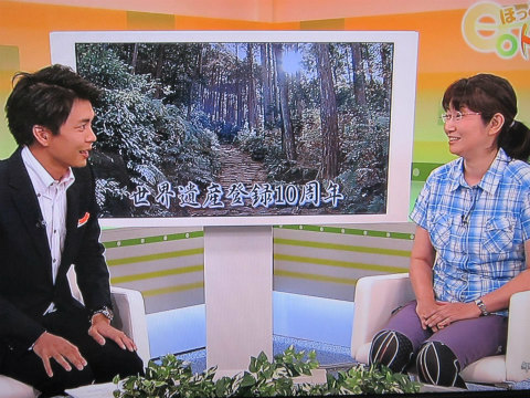 NHKテレビで熊野古道世界遺産10周年について話す内山裕紀子と男性アナウンサー