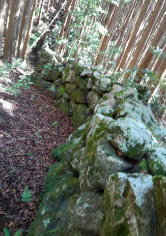熊野古道伊勢路・羽後峠の猪垣