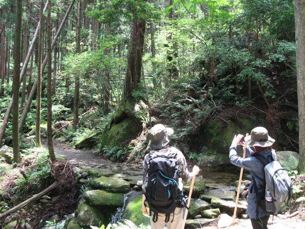 熊野古道馬越峠と天狗倉山トレッキングツアーの女性参加者2人