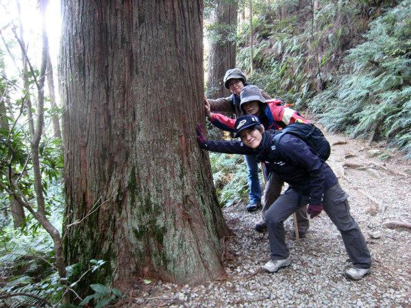 熊野古道馬越峠と天狗倉山トレッキングツアーの女性参加者3人