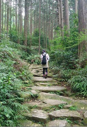 熊野古道伊勢路・馬越峠の石畳と一人旅女性