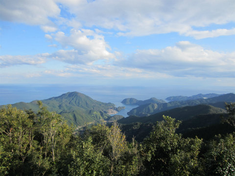 熊野古道伊勢路・八鬼山越えのさくらの森広場から眺める九鬼町