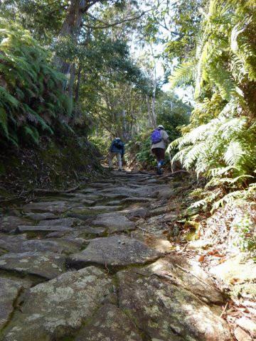 熊野古道伊勢路・馬越峠を歩く語り部ガイドとツアー参加女性