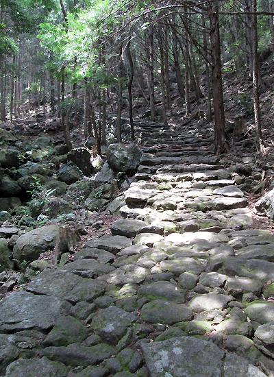 熊野古道伊勢路・松本峠の石畳