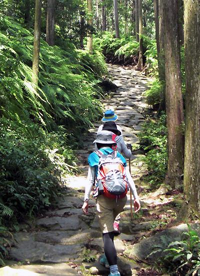 熊野古道伊勢路・馬越峠エコツアーにて、石畳を歩くガイドと女性