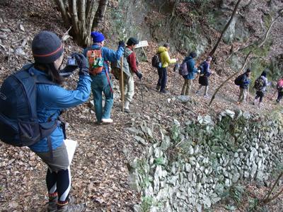 熊野古道伊勢路・ツヅラト峠の野面乱層積石垣を歩く団体ツアー客