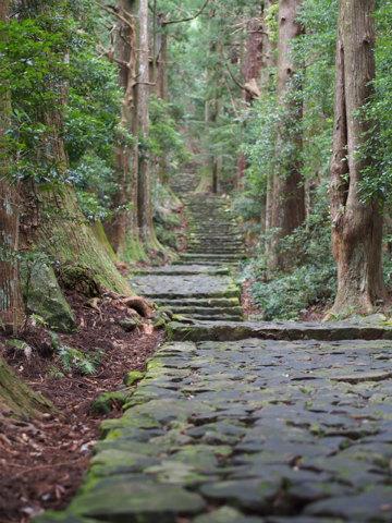 雨に濡れた熊野古道大門坂
