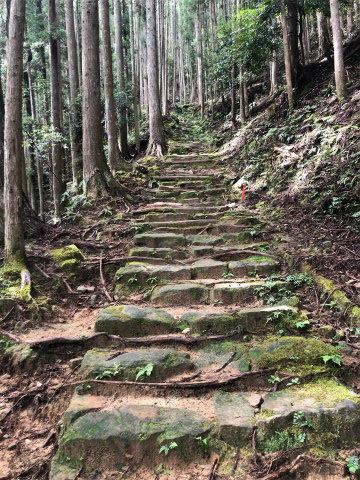 熊野古道中辺路・大日越の石段