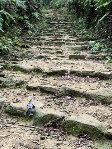 熊野古道中辺路の石段と鳥のぬいぐるみ